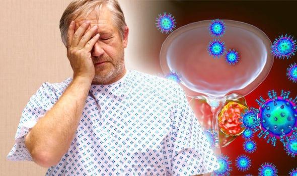 prostate histology prostatitis diagnosis blood test